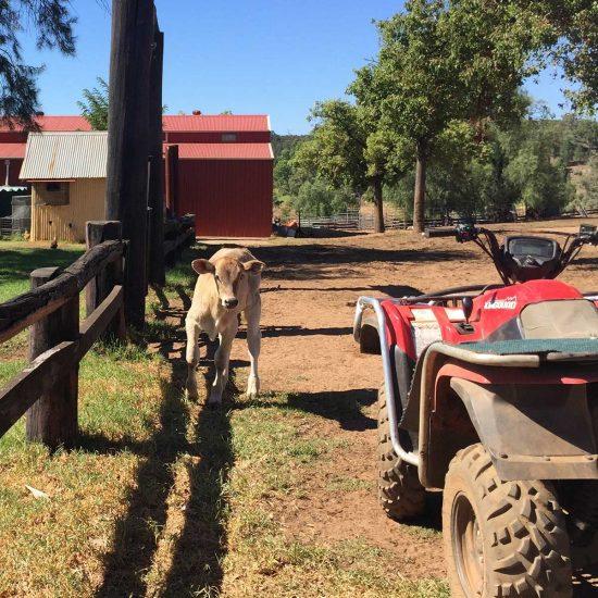 Rancho en Queensland