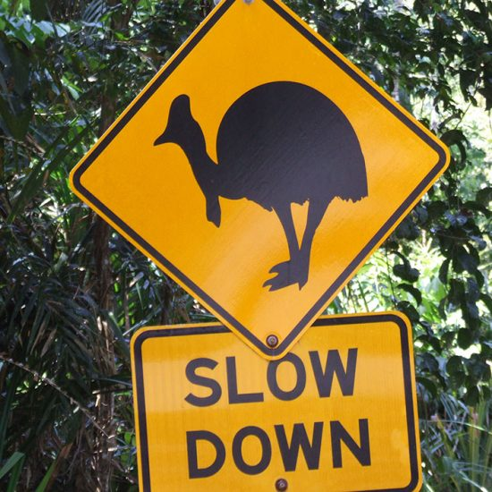 Cartel de emu